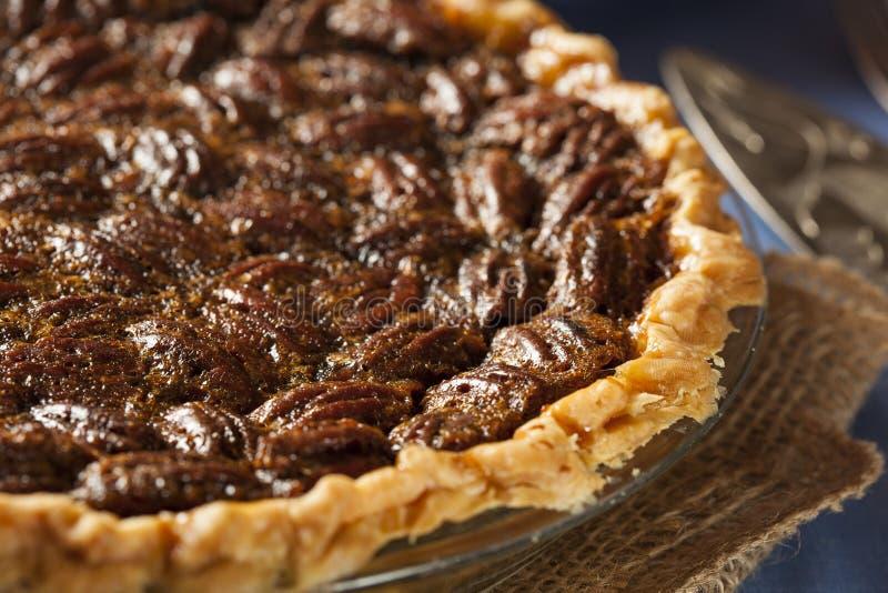 Домодельный очень вкусный пирог с орехами стоковое фото