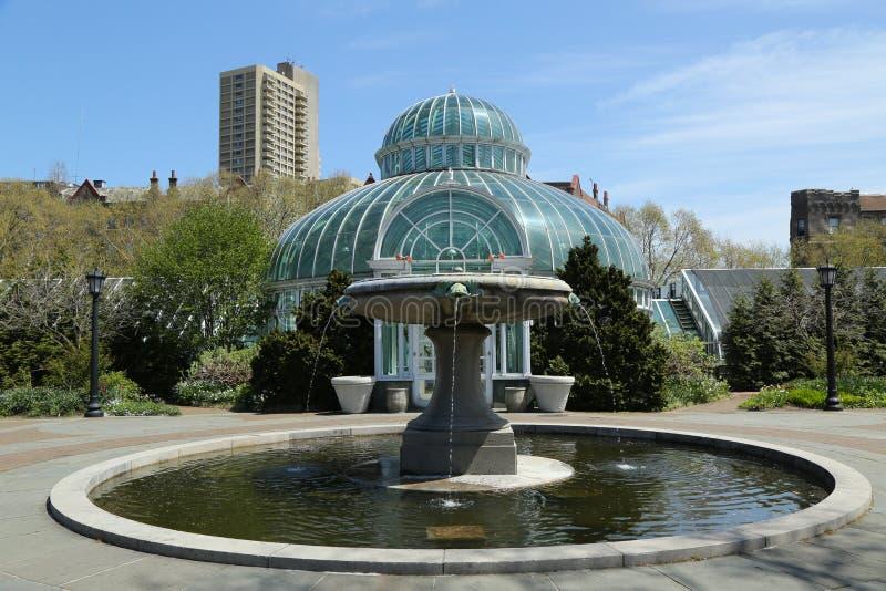 Дом ладони в саде Бруклина ботаническом стоковые изображения