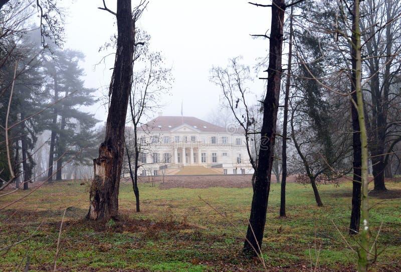 Дом короля Savarsin Румынии стоковая фотография rf
