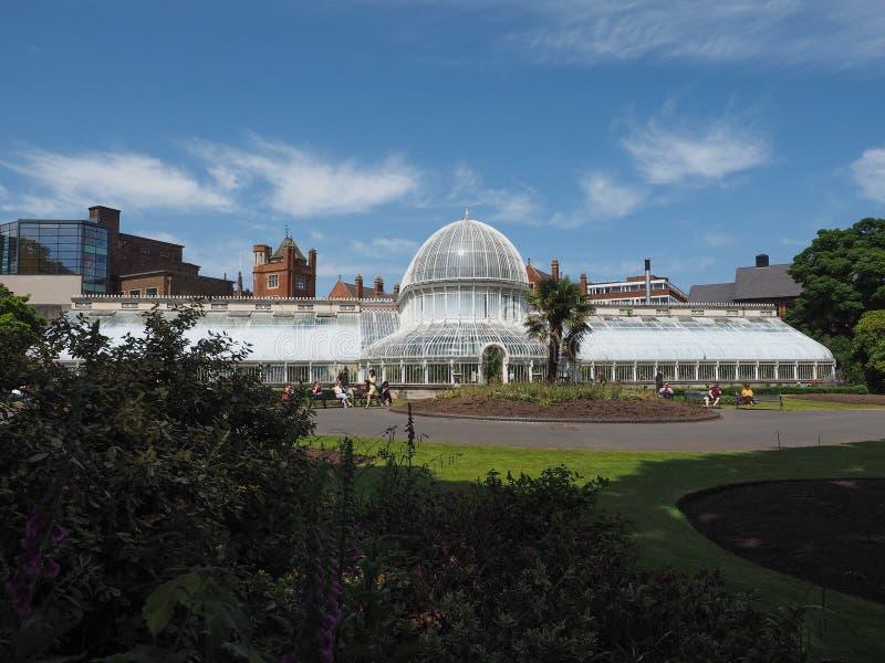Дом ладони в ботанических садах в Белфасте стоковые фото