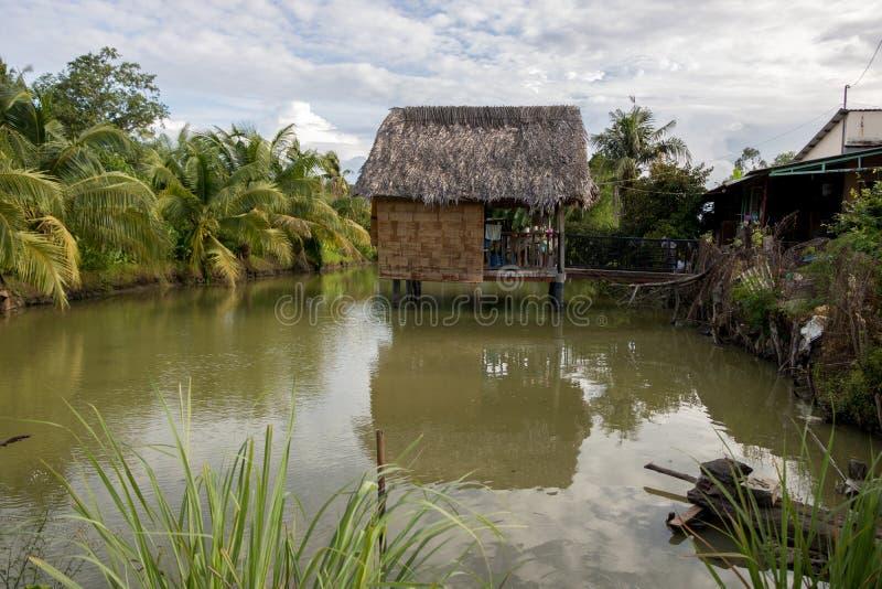 дом на дереве Въетнамск-стиля на красивом зеленом пруде с кокосовыми пальмами и тропическими заводами - солнечным днем с облаками стоковые изображения