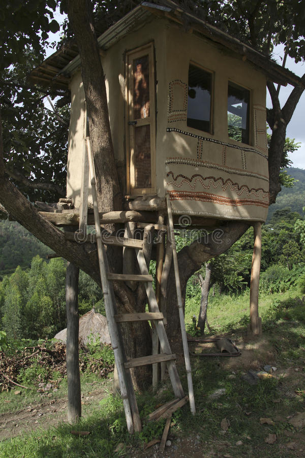 Дом на дереве стоковая фотография rf