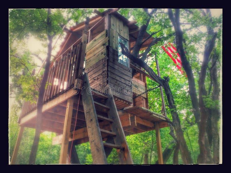 Дом на дереве стоковое изображение rf