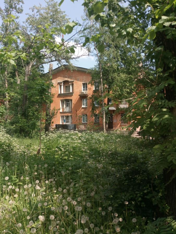 Дом на одуванчика поля деревьях снова стоковая фотография rf