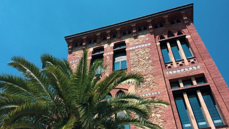 дом около пальмы стоковое изображение rf