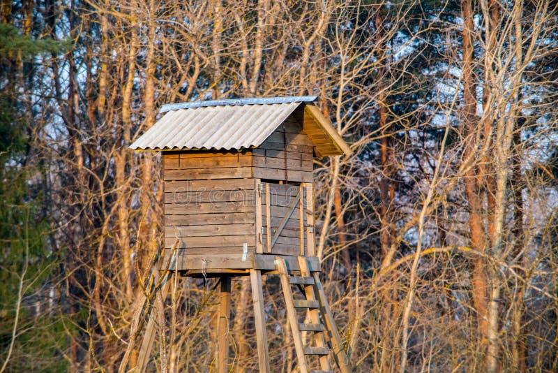 дом охотника в лесе стоковое изображение rf