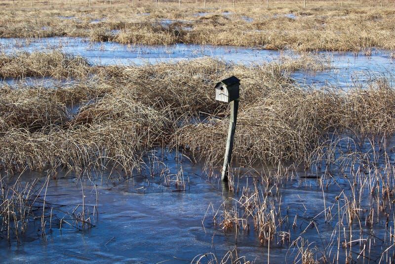 Дом птицы расположенный вдоль прогулки природы болота стоковые изображения