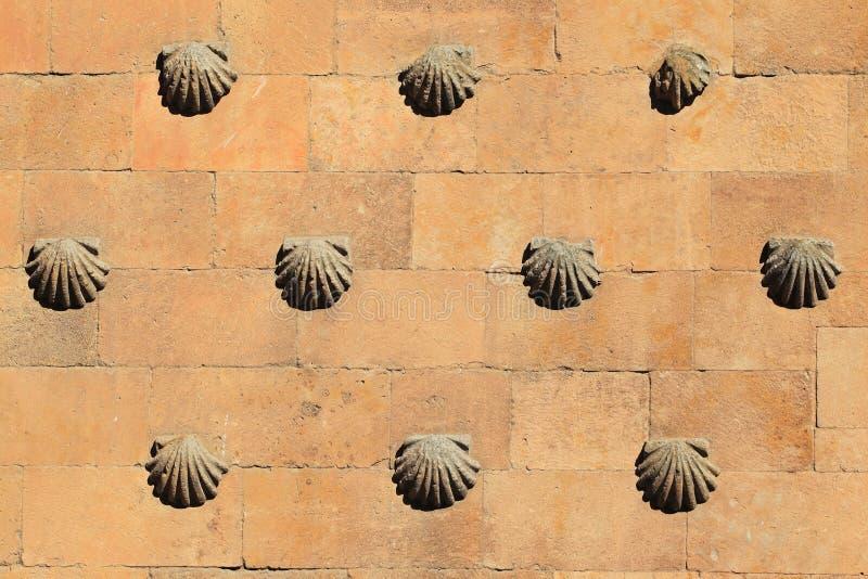 Дом раковины в Саламанке стоковые фотографии rf