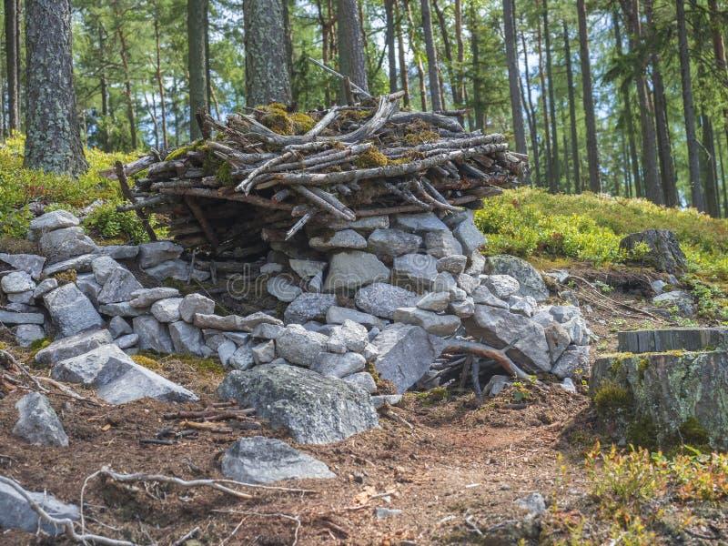 Дом сказки для карлика в строении леса детьми от камней, древесины и мха, играя в лесе, предпосылка дерева стоковые фотографии rf