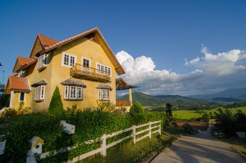 Дом страны желтый в древесине сосны стоковые фотографии rf