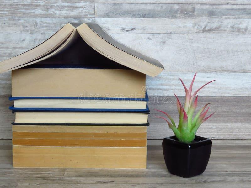 Дом сформировал кучу старых книг, зеленое растение в черном цветочном горшке на отбеленной полке дуба стоковая фотография