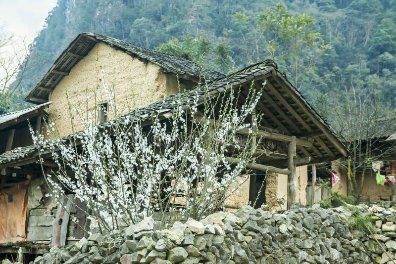 Дом этнических меньшинств стоковое фото rf