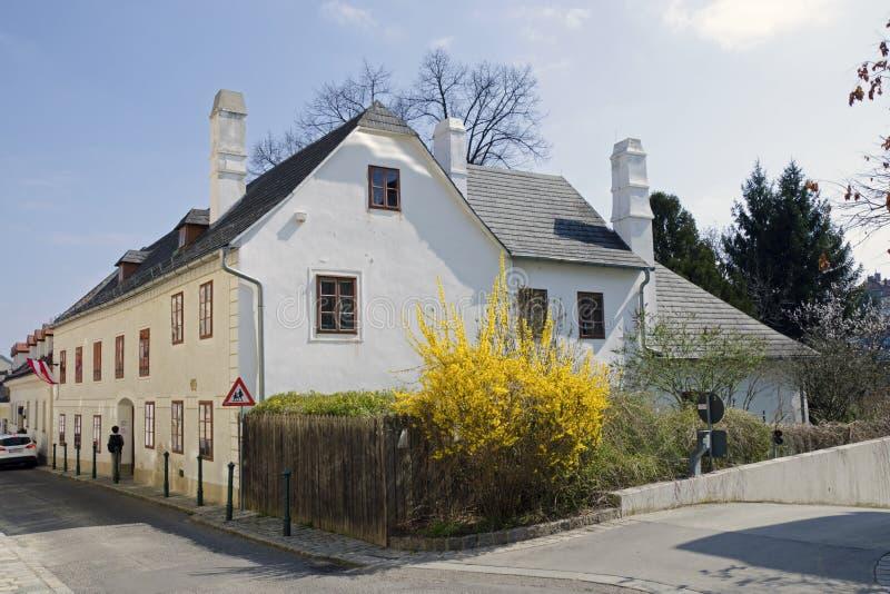 Дом Beethoven в вене стоковое изображение rf