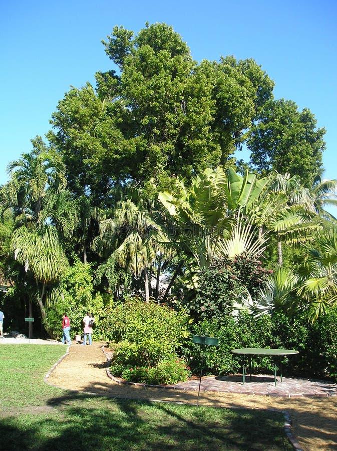 Дом Key West Hemingway стоковое фото