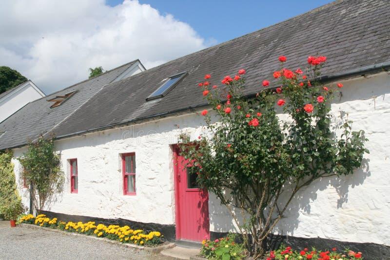 дом thatched Ирландия стоковые изображения rf