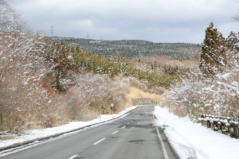 Дорога асфальта в зиме префектуры Shizuoka, Японии стоковое изображение
