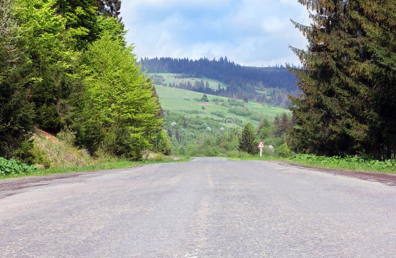 Дорога асфальта через горы с елями стоковые изображения