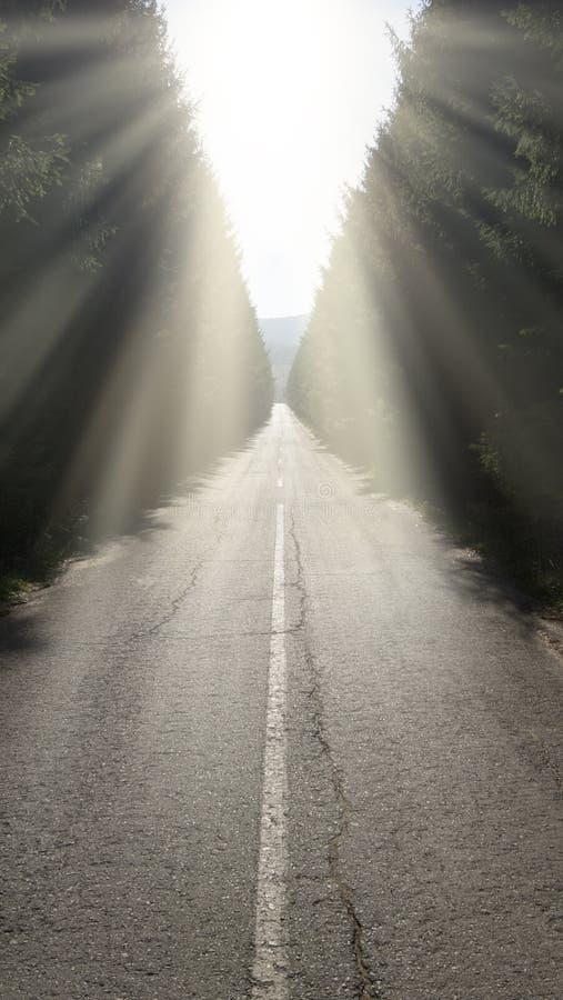 Дорога вперед стоковые фотографии rf