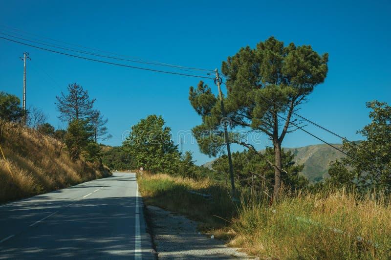 Дорога вымощенная сельской местностью пропуская через холмистый ландшафт стоковые изображения
