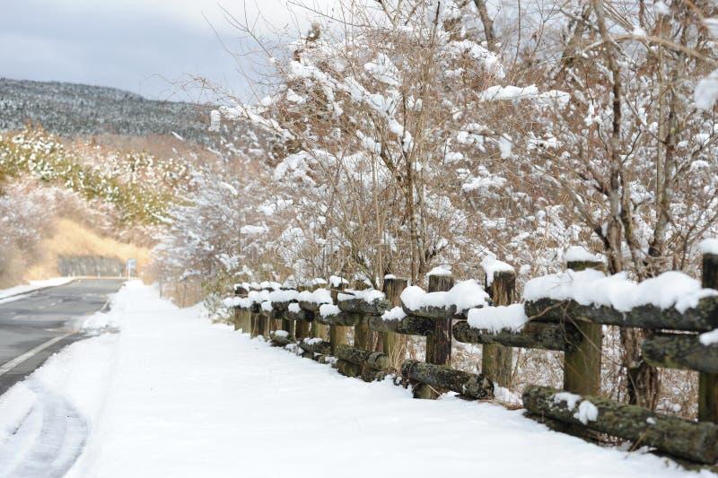 Дорога в зиме в префектуре Shizuoka, Японии стоковая фотография rf