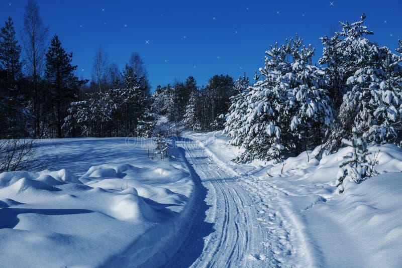 Дорога в лесе зимы стоковое изображение rf