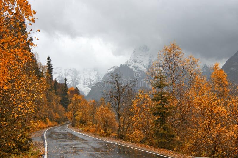Дорога в лесе осени против гор стоковые изображения