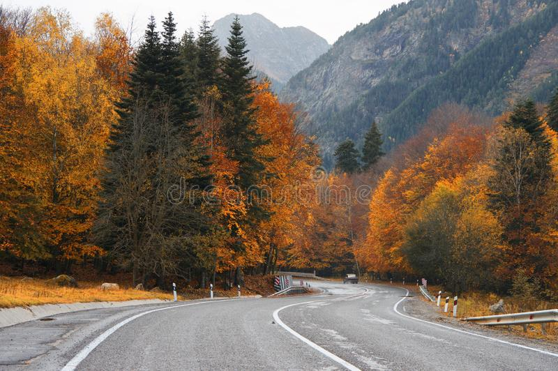 Дорога в лесе осени против гор стоковые фотографии rf