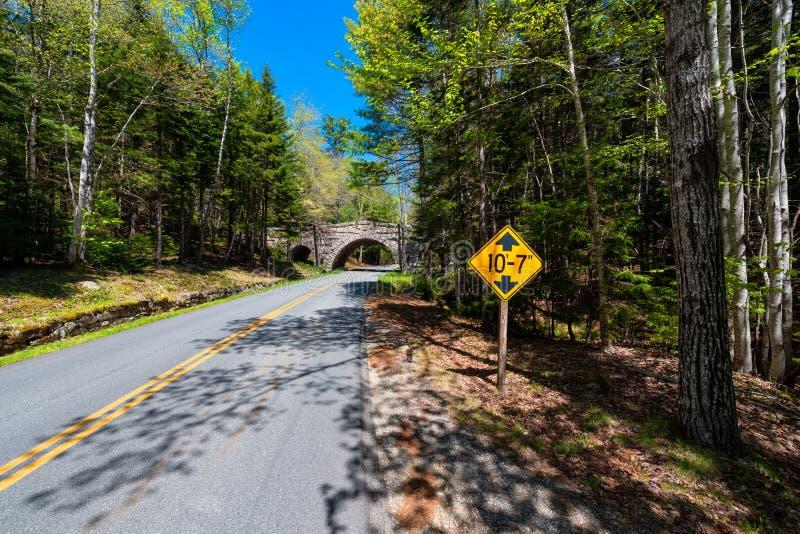 Дорога в национальном парке Мейне Acadia стоковые фото