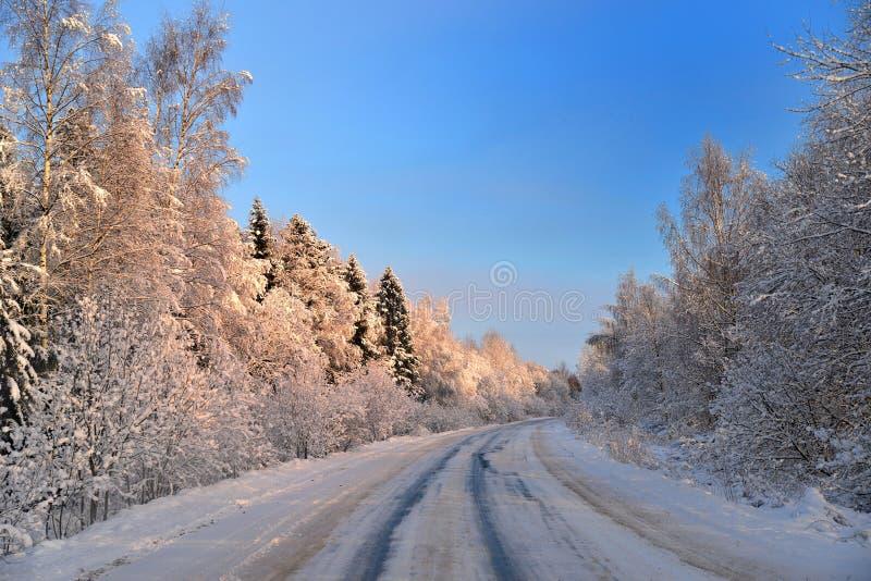 Дорога в область ферзя снега стоковая фотография
