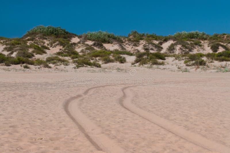 Дорога в песке стоковые изображения rf