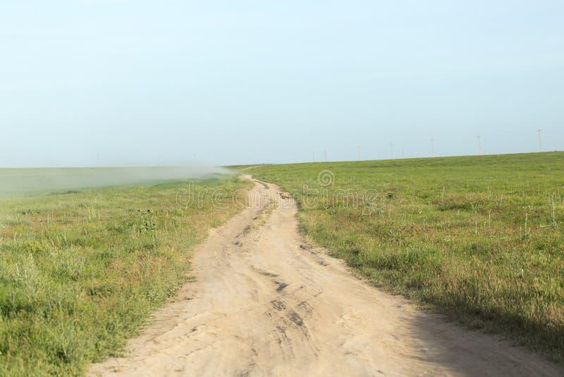 Дорога в поле стоковая фотография
