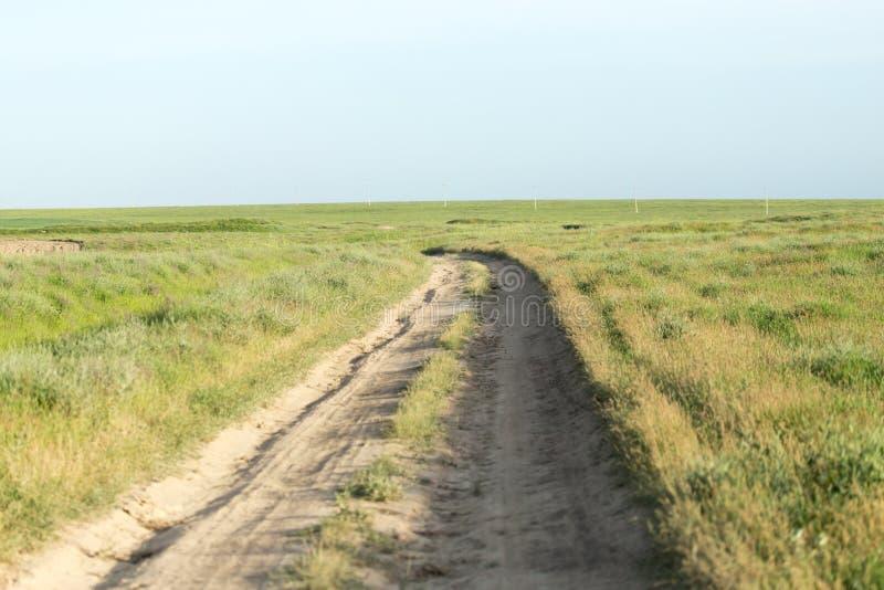 Дорога в поле стоковые фотографии rf