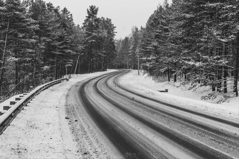 Дорога в пуще зимы стоковое фото rf