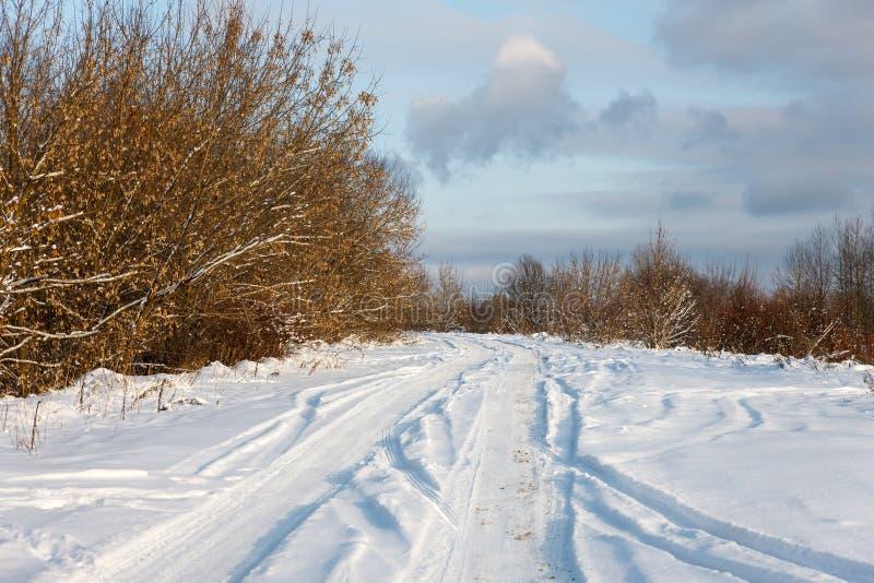 Download Дорога в древесинах стоковое фото. изображение насчитывающей страна - 37927916