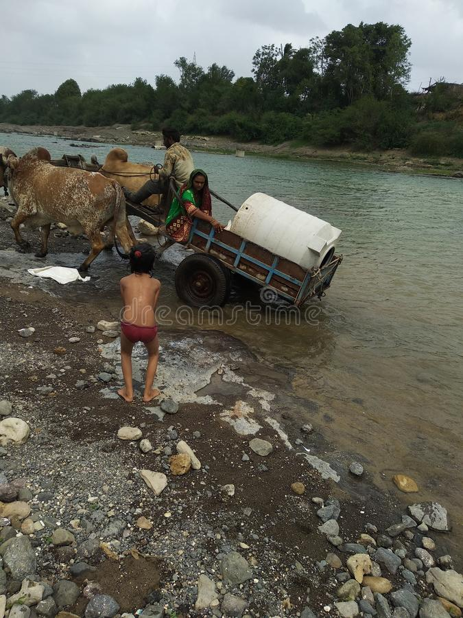 Дорога в реке это жизнь деревни в индийском naturality деревни стоковые изображения rf