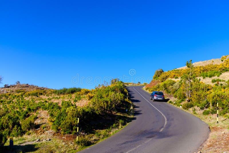 Дорога горы в Мадейре стоковые фото