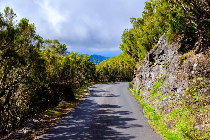 Дорога горы в Мадейре стоковая фотография rf