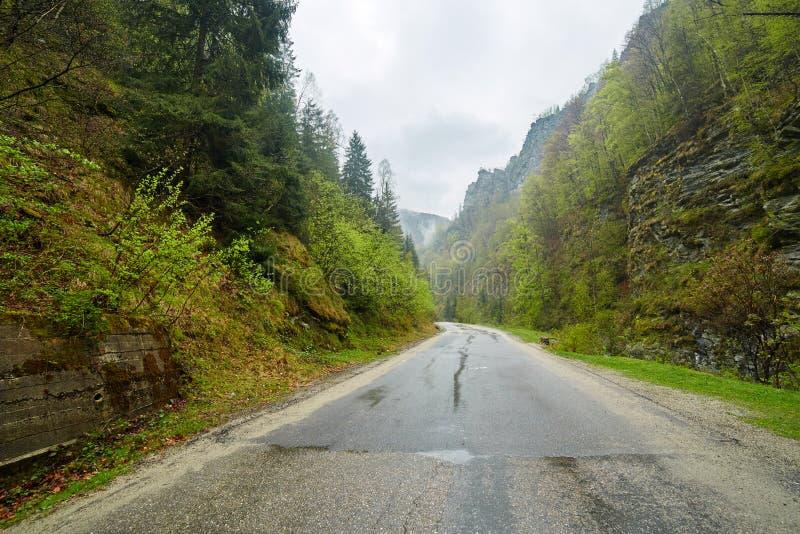 Дорога горы в дождливом дне стоковое фото rf
