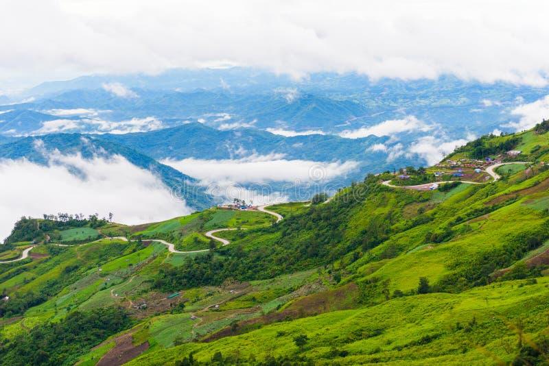 Дорога горы на (tubberk phu) в равенстве соотечественника Phu Hin Rong Kla стоковые фото