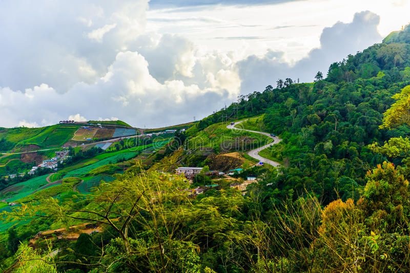 Дорога горы на (tubberk phu) в равенстве соотечественника Phu Hin Rong Kla стоковое изображение rf