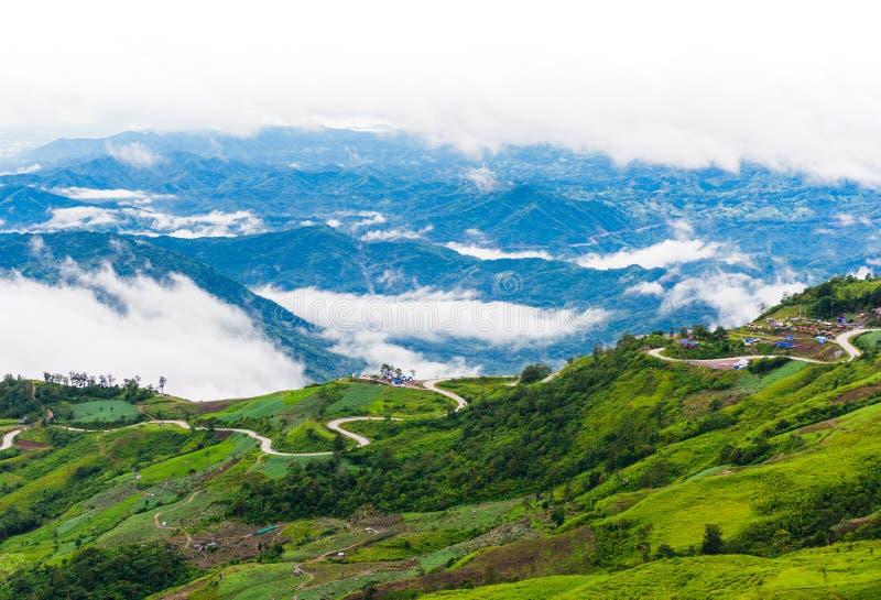 Дорога горы на (tubberk phu) в равенстве соотечественника Phu Hin Rong Kla стоковое фото rf