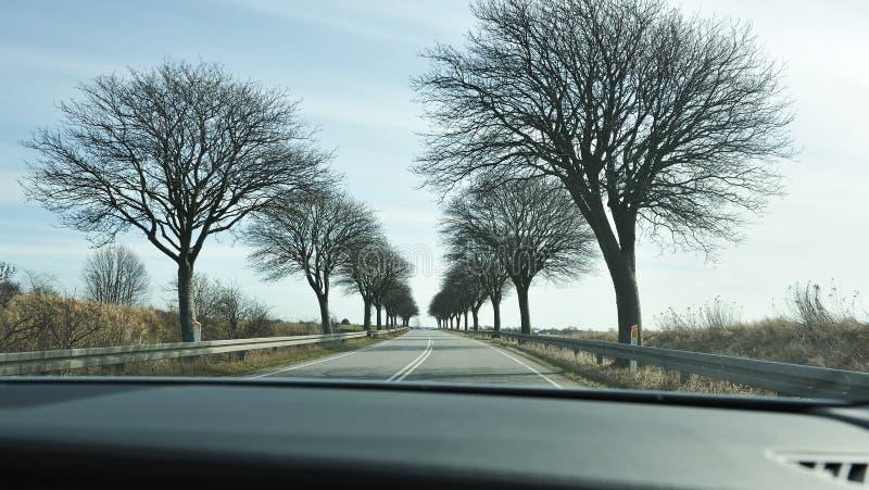 дорога Дании сценарная стоковое изображение
