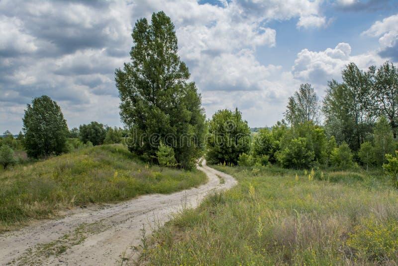 Дорога деревни среди деревьев в поле во время временени стоковое фото