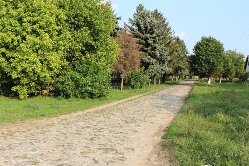 Дорога деревни булыжника стоковое изображение