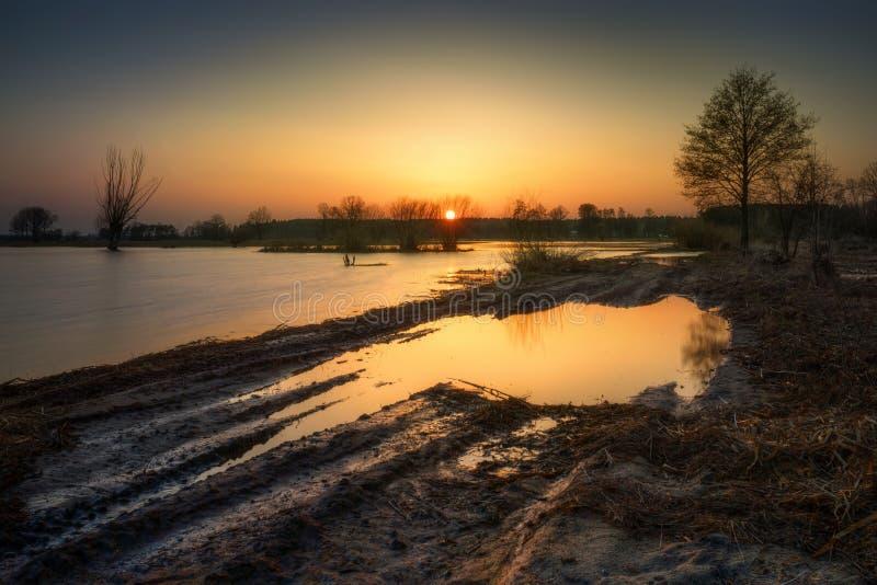 Дорога затопленная черепашкой стоковое изображение