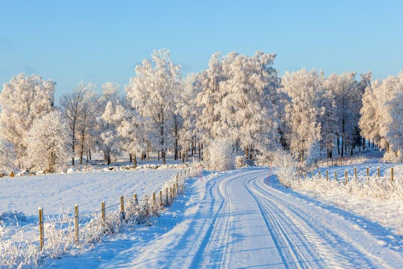 Дорога зимы в сельском ландшафте стоковая фотография