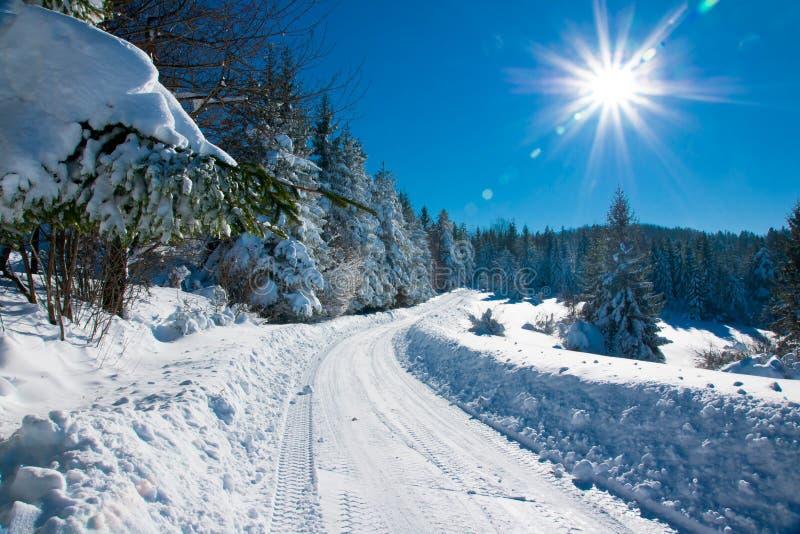 Дорога зимы стоковое фото rf