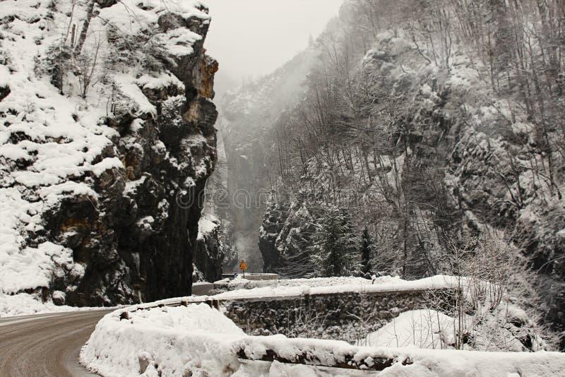 Дорога зимы Snowy стоковое изображение rf