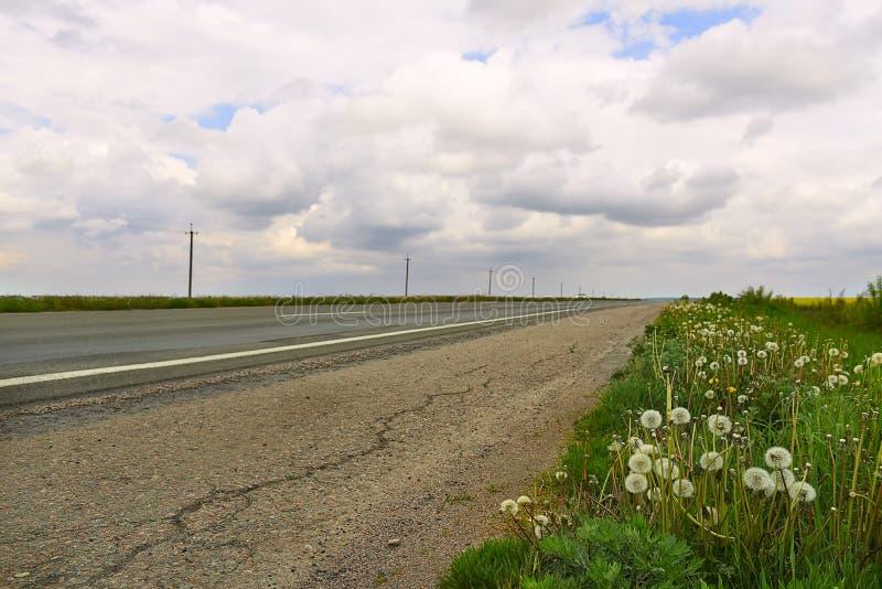 Дорога и обочина с цветками стоковое изображение rf