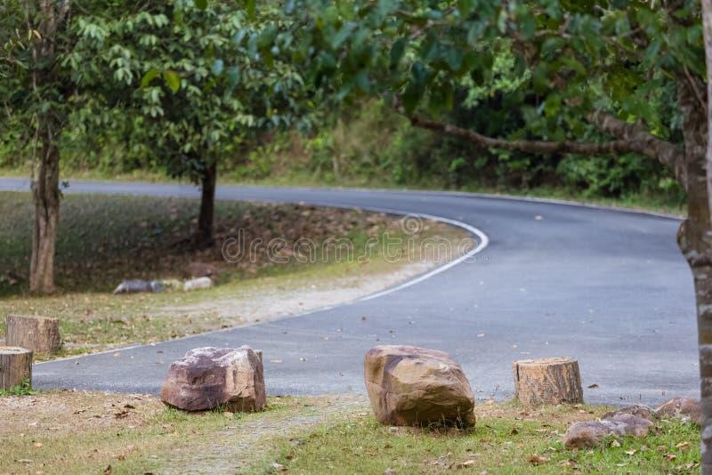 Дорога кривой в парке стоковая фотография